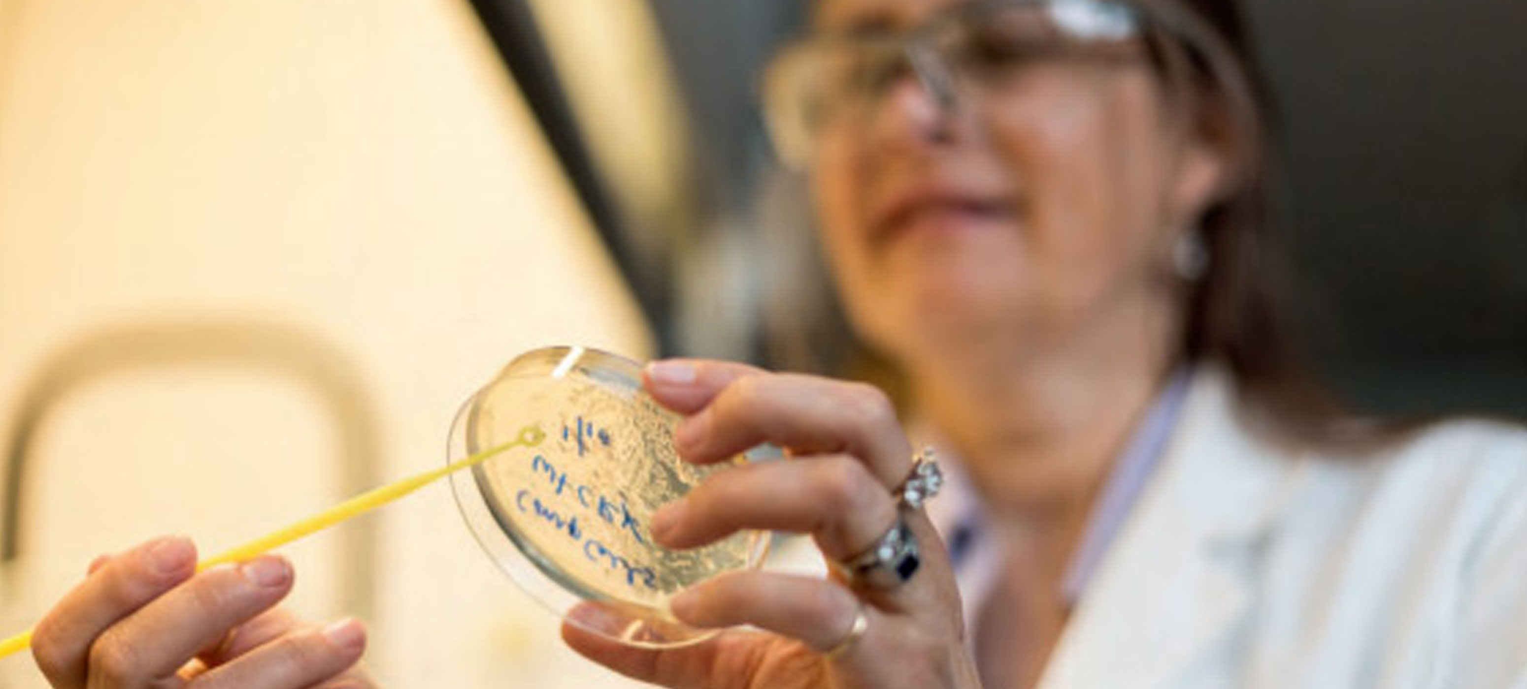 A lab assistant holding a petri dish