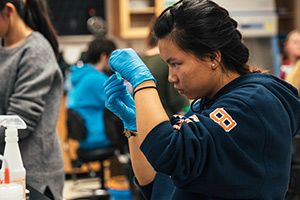 A student conducting an experiment