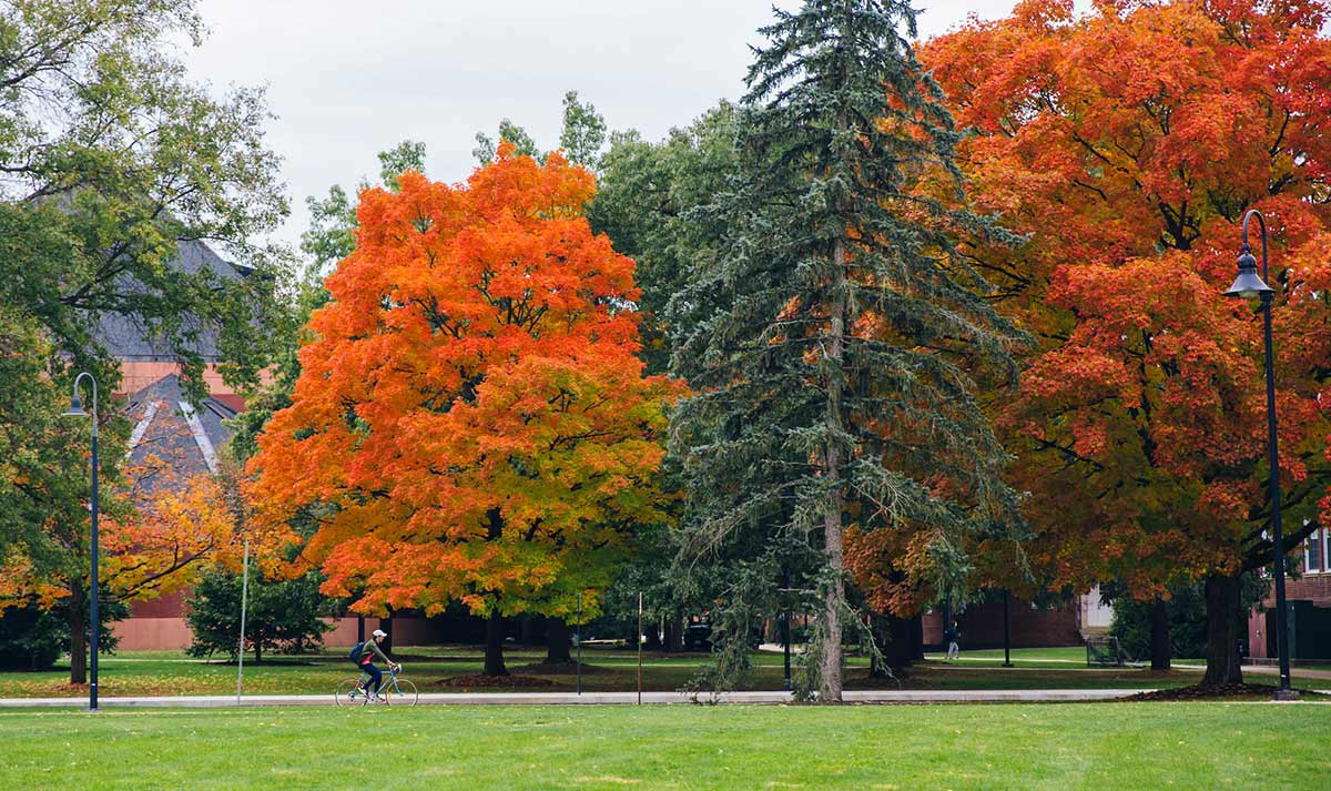 Green and orange colored trees on Gettysburg College campus, with a student cycling from afar.
