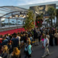 Interning at Cannes: Two students make connections at an international film festival