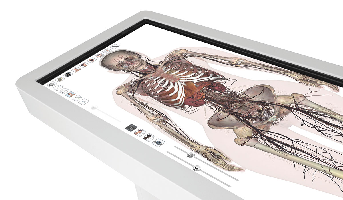 9 facts about Gettysburg's new virtual dissection tables