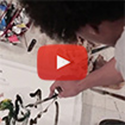 VIDEO: Every painting is a conversation, says David Rampersad '17