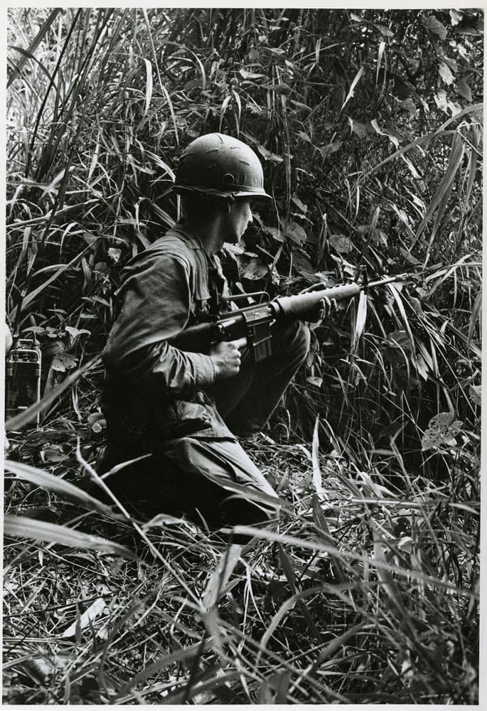 Soldier kneeling in the jungle with rifle pointed forward