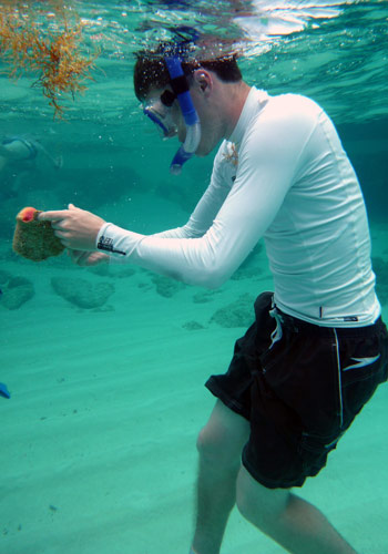 Student examines a queen conch shell