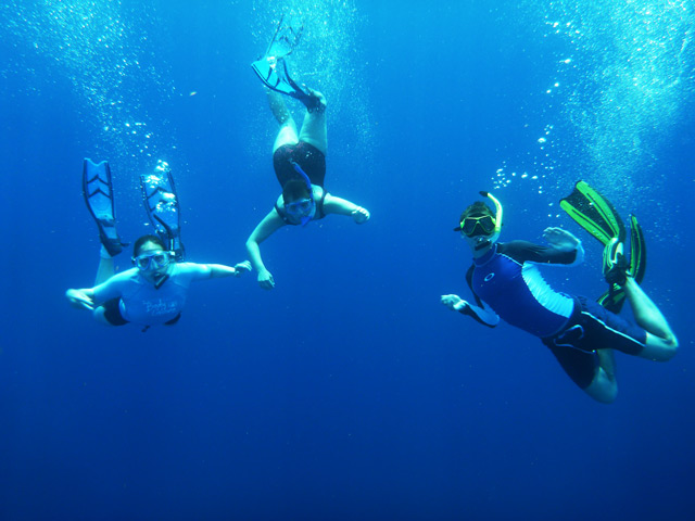 Students float against the blue background of the open ocean